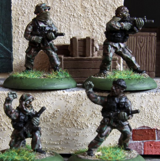 SeAL strike team (Black Ops)