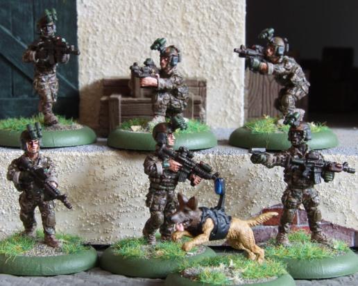 SeAL team (DEVGRU)