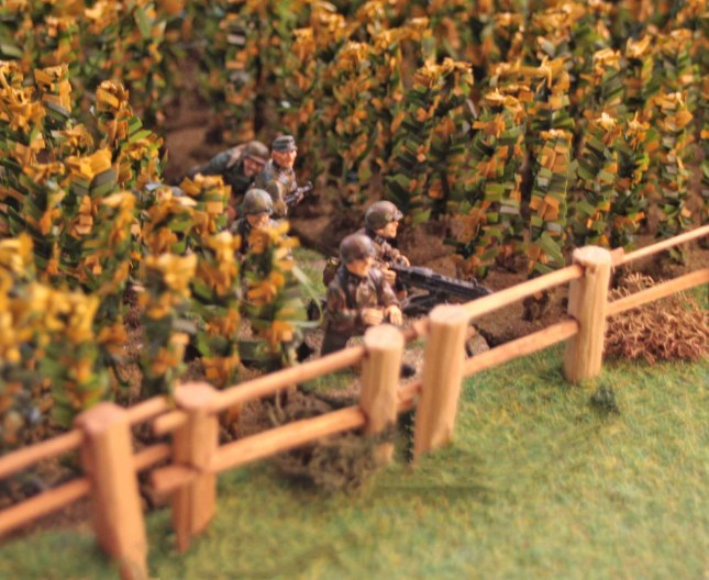 MG 42 HMG team lying in ambush in the corn field