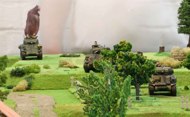 Shermans in the orchard