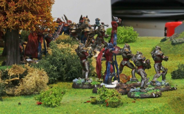 Brotherhood forces emerging from the forrest
