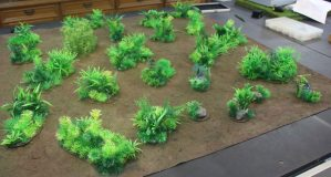 Jungle terrain