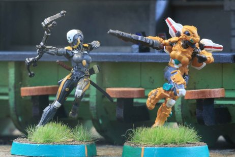 Yu Jing Ninja and Tiger Soldier