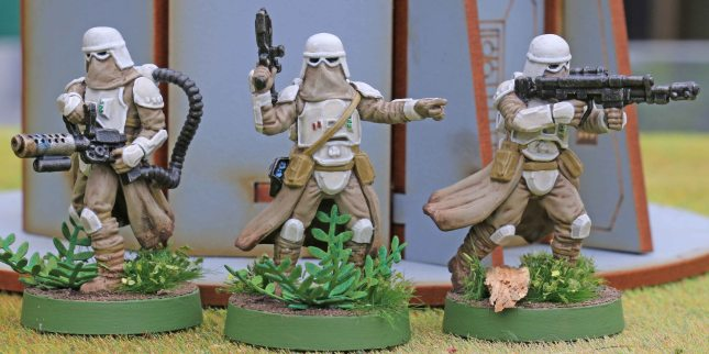 Snowtroopers (Unit leader and heavy weapons)
